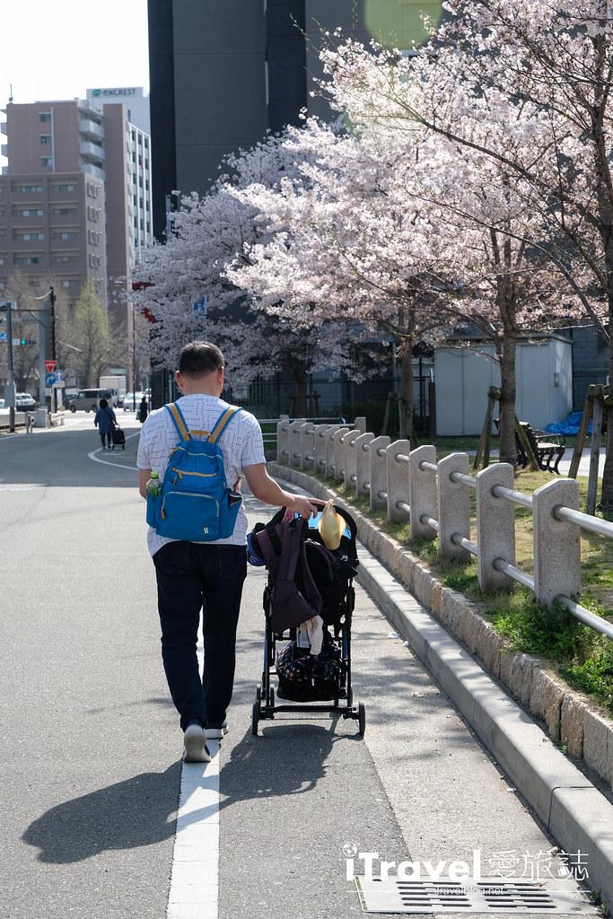 福岡賞櫻景點 美野島公園、東領公園 (21)