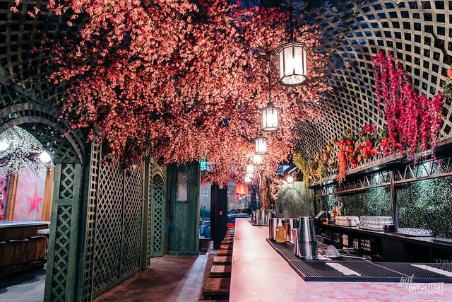 Cherry Blossom Bar 2019-19