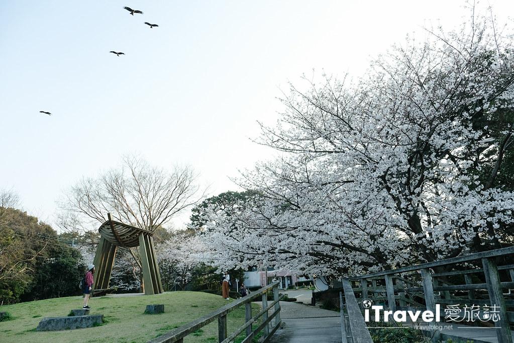 福岡賞櫻景點 西公園Nishi Park (56)