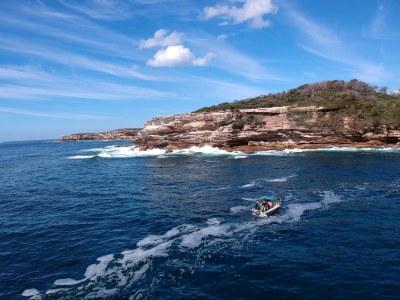 Diving off Cape Solander #marineexplorer