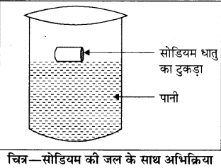 RBSE Solutions for Class 8 Science Chapter 2 Q57