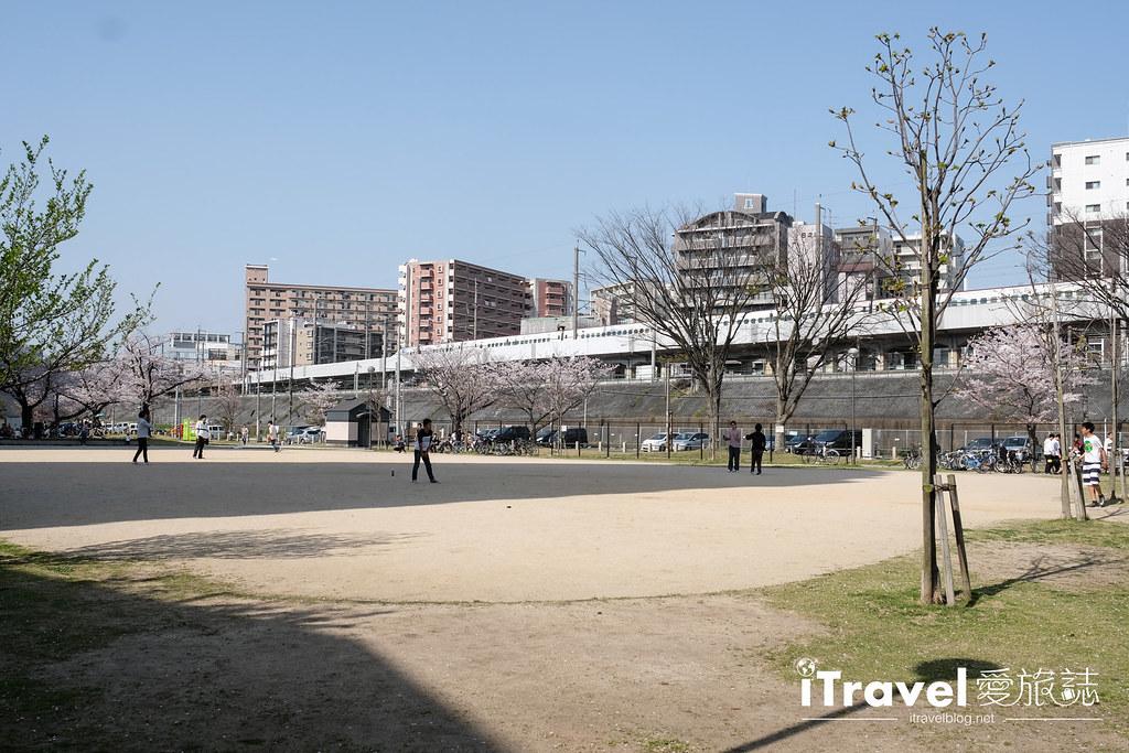 福岡賞櫻景點 美野島公園、東領公園 (24)