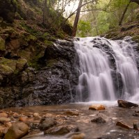 Uvas Canyon County Park