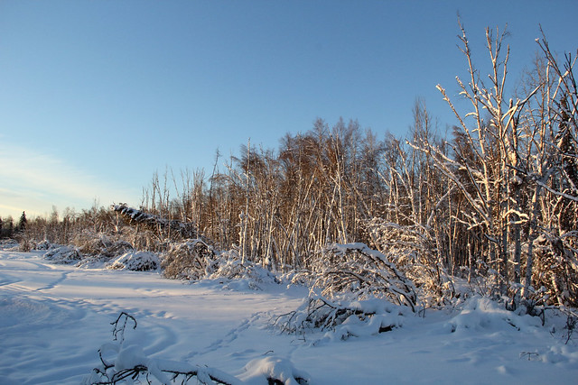 2019-02-01_Fairbanks_109