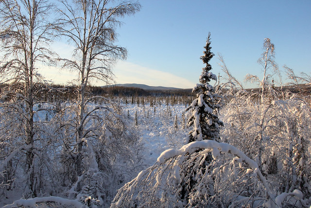 2019-02-01_Fairbanks_106