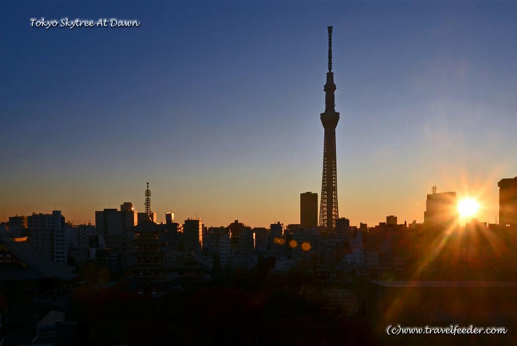 Tokyo Skytree view at dawn-2