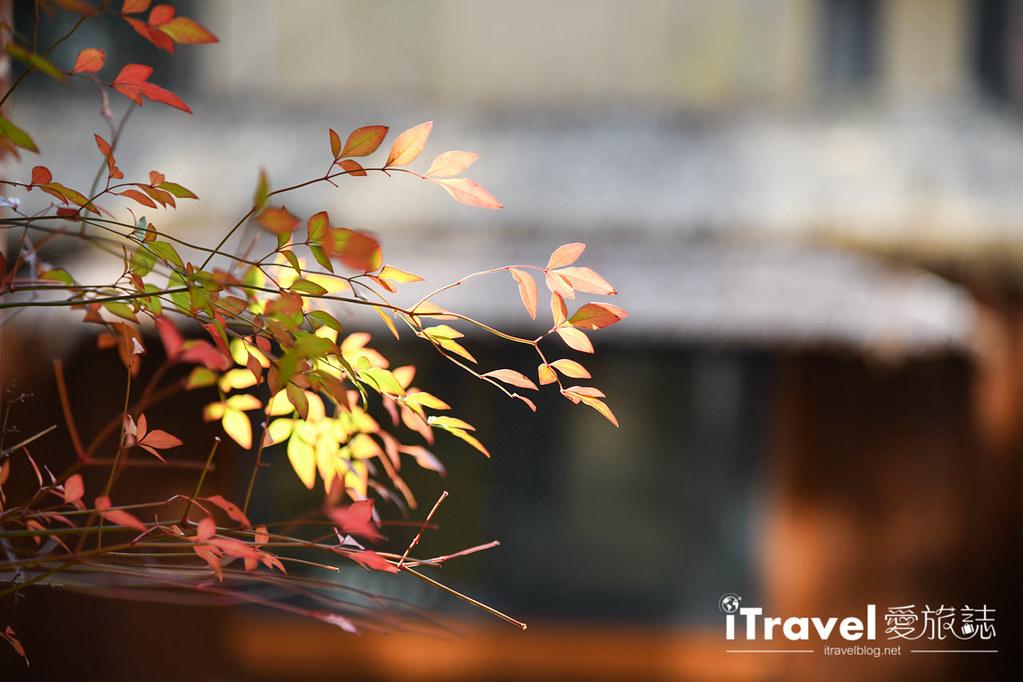 杭州皇逸庭院酒店 Hangzhou Cosy Park Hotel (7)