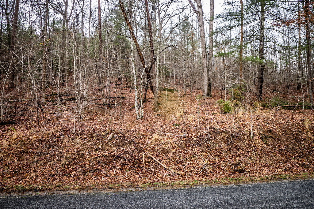 Tall Pines Preserve and South Saluda Church Cemetery-86