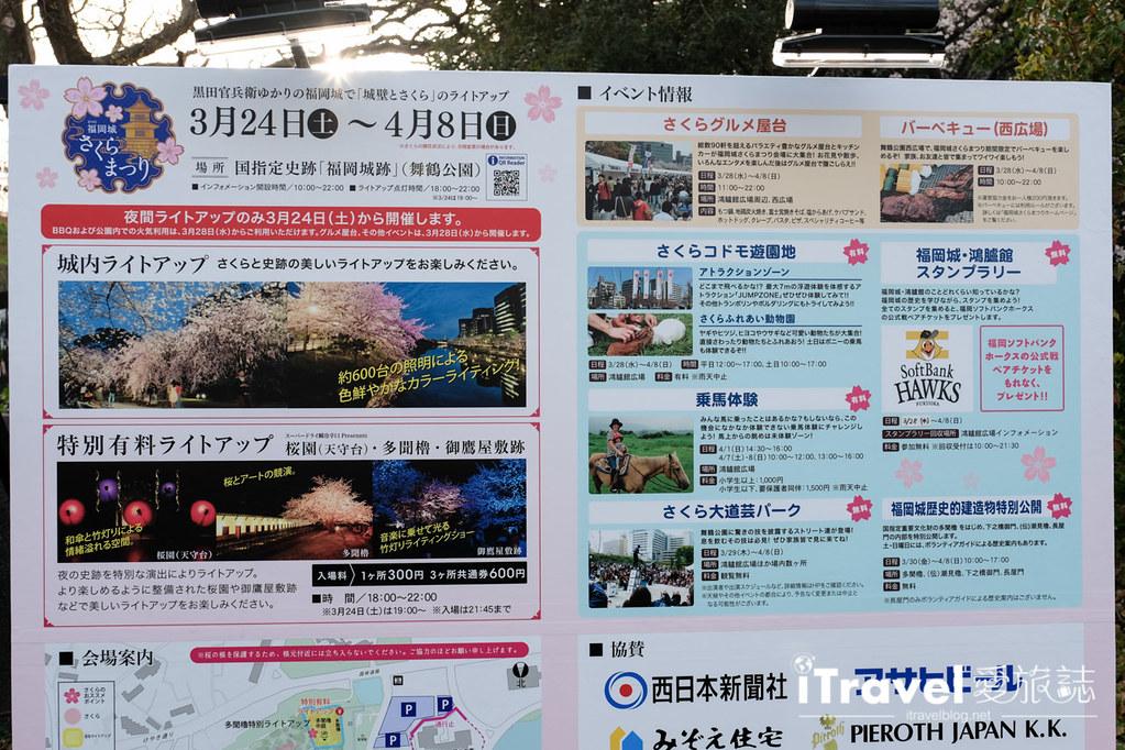 福岡賞櫻景點 福岡城 (16)
