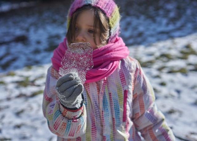 Ода зимним пикникам