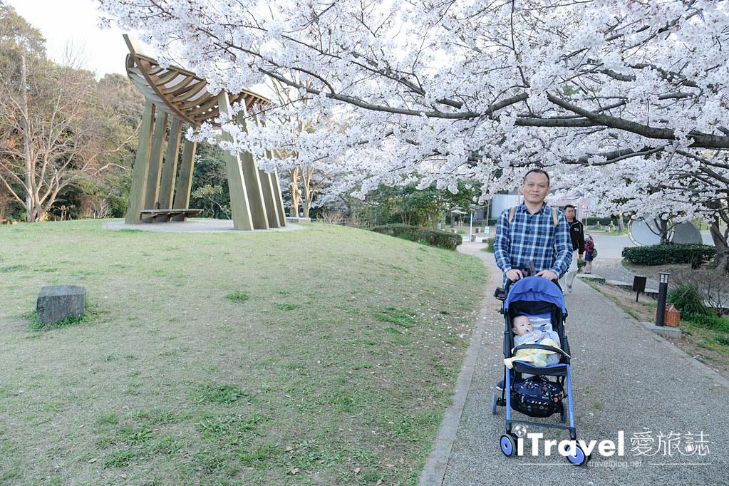 福岡賞櫻景點 西公園Nishi Park (58)