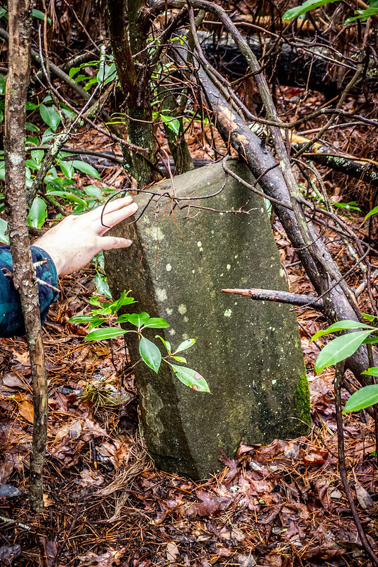 Tall Pines Preserve and South Saluda Church Cemetery-56