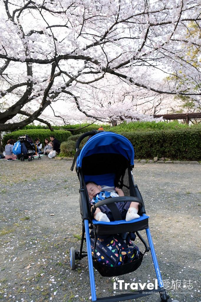 福岡賞櫻景點 福岡城 (26)