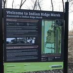 Welcome to Indian Ridge Marsh