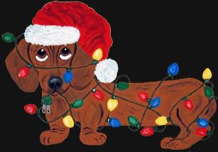 dachshund_tangled_in_christmas_lights_red_t_shirt-re8f601f33e294b53b30294e0b2835789_k2gl9_307