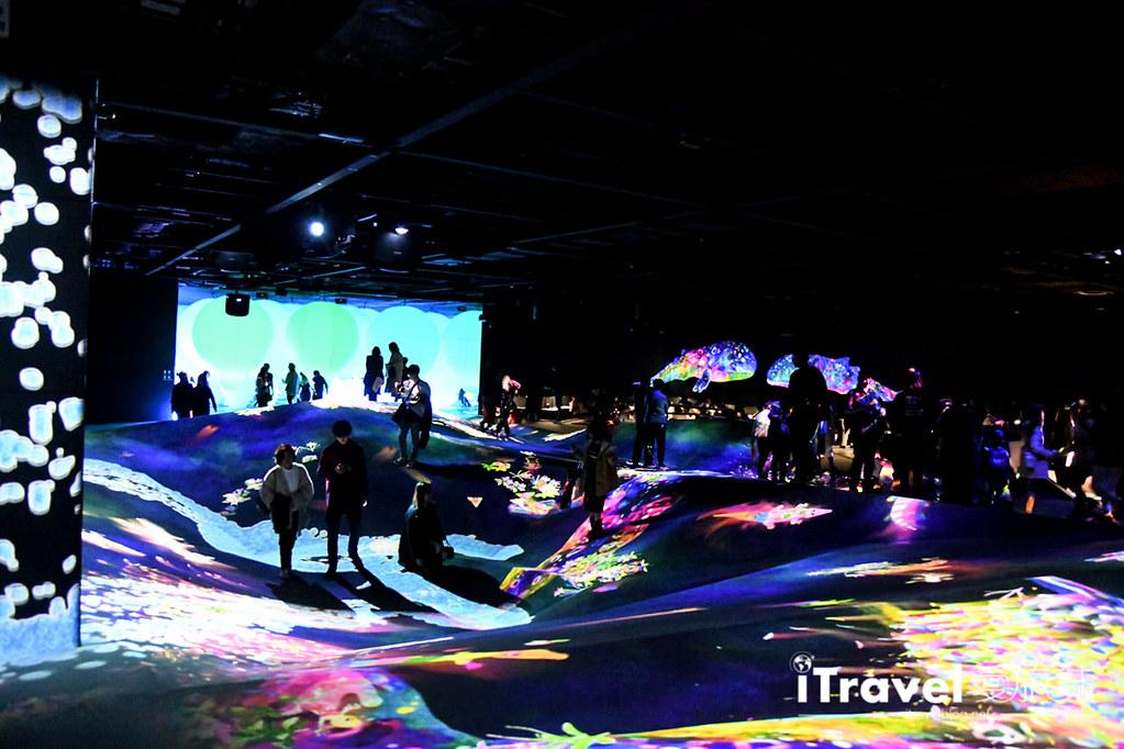 東京藝術展覽 teamLab Borderless (61)