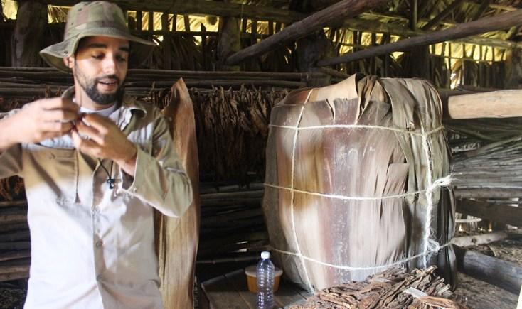 Tobacco lesson, Vinales, Cuba itinerary
