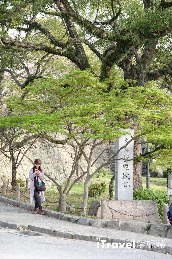 福岡賞櫻景點 福岡城 (21)
