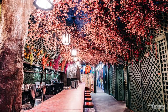 Cherry Blossom Bar 2019-22