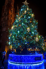 Cracow fancy tree