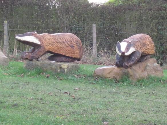 Brotton Badgers