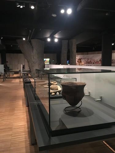 Museo Gallo Romano
