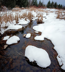 Snowy Fraser Creek