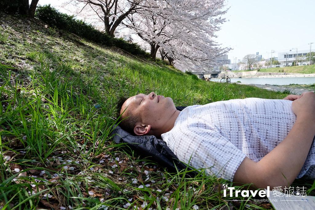福岡賞櫻景點 美野島南公園 (47)