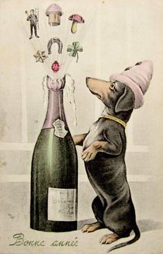 800daf87cf3e1d356aeb875689a9dcf7--clube-vintage-dachshund-love