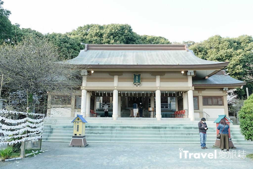福岡賞櫻景點 西公園Nishi Park (44)