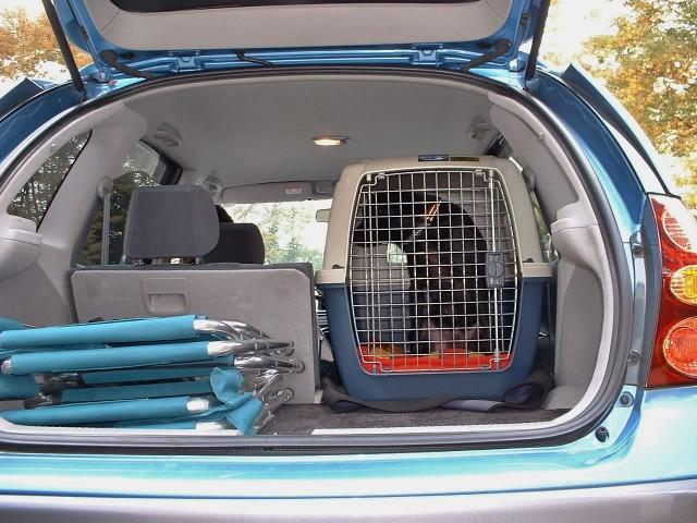 ドライブ中はクレートに入っている犬