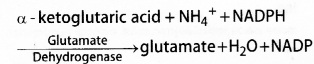 Plus One Botany Notes Chapter 8 Mineral Nutrition 4