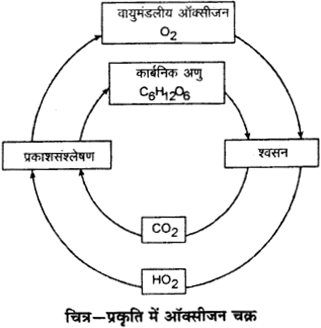 RBSE Solutions for Class 9 Science Chapter 13 pariyavaran 3