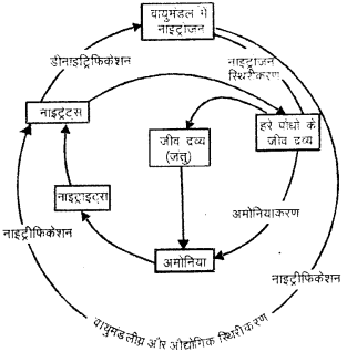 RBSE Solutions for Class 9 Science Chapter 13 pariyavaran 1