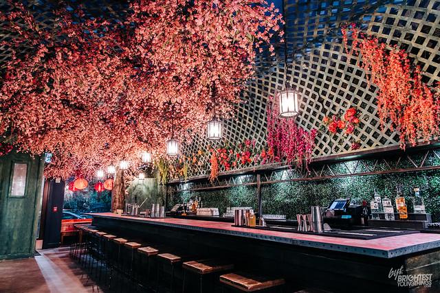Cherry Blossom Bar 2019-18