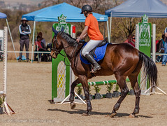 "Crossroads Equestrian Centre • <a style=""font-size:0.8em;"" href=""http://www.flickr.com/photos/67597598@N08/29135529393/"" target=""_blank"">View on Flickr</a>"