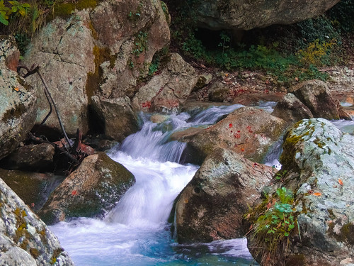 Il ruscello... (rospex) parco fiume natura acqua ruscello torrente sibillini