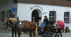 """Die Kutsche. Die Kutschen. Genauer: Die Pferdekutsche. Die Pferdekutschen. Die Kutsche steht vor dem Rathaus. • <a style=""""font-size:0.8em;"""" href=""""http://www.flickr.com/photos/42554185@N00/29192652244/"""" target=""""_blank"""">View on Flickr</a>"""