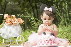 Smash the Cake - 018