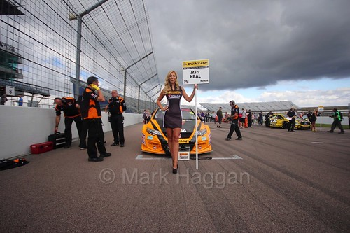 Matt Neal on the grid at Rockingham 2016