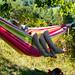 Hängmattehäng/hammock-hanging