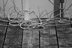 """Rope • <a style=""""font-size:0.8em;"""" href=""""http://www.flickr.com/photos/65051383@N05/8542549781/"""" target=""""_blank"""">View on Flickr</a>"""