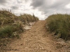 "Weekend Ameland 2016 • <a style=""font-size:0.8em;"" href=""http://www.flickr.com/photos/138177527@N03/29841266900/"" target=""_blank"">View on Flickr</a>"
