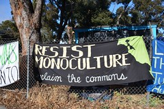 Gezi Gardens occupation to save Hayes Valley Farm