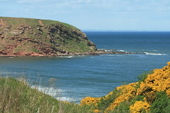 Pease Bay, Berwickshire, Scotland