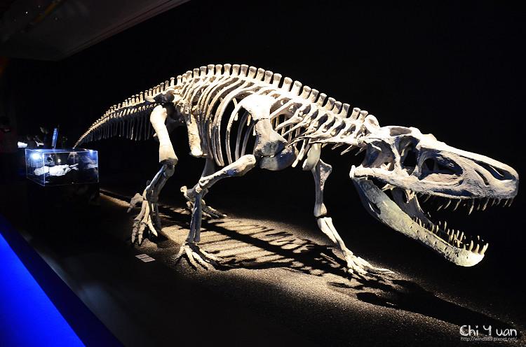 地球最古老的恐龍展07.jpg