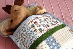 Teddy bear sleeping bag