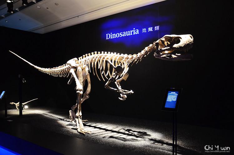 地球最古老的恐龍展06.jpg