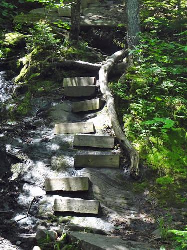 Stairs on Mt. Moosilauke's Beaver Brook Trail