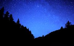 Andromeda on the Horizon